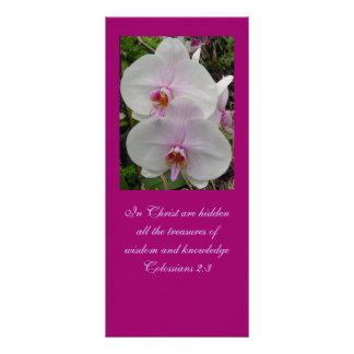 Orquídea - flor cor-de-rosa (2:3 de Colossians) 10.16 X 22.86cm Panfleto