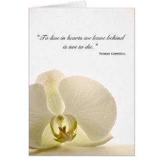 Orquídea no obrigado branco da simpatia você cartã cartoes