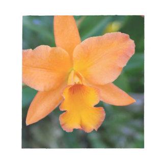 Orquídea Salmon Bloco De Notas