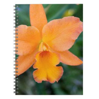 Orquídea Salmon Caderno Espiral
