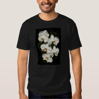 Orquídeas brancas do phalaenopsis t-shirts