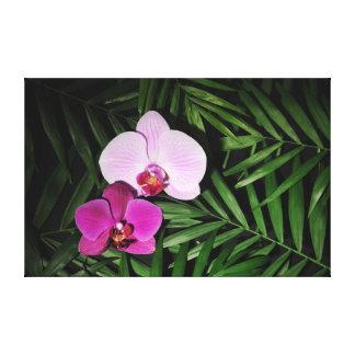 Orquídeas com folhas de palmeira impressão em tela