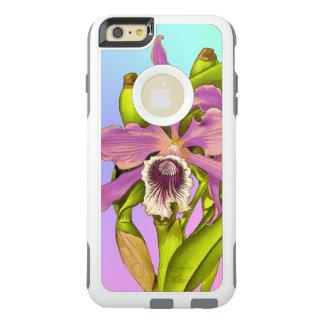 Orquídeas cor-de-rosa coloridas