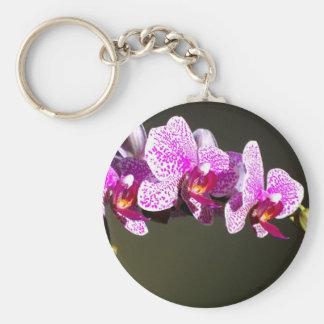 Orquídeas cor-de-rosa chaveiro