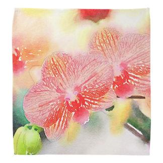 Orquídeas da aguarela bandanas