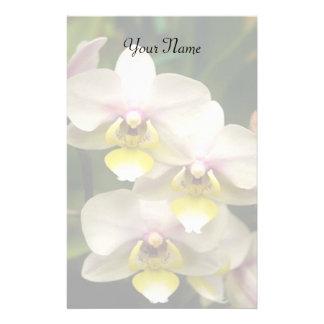 Orquídeas estacionárias papelaria