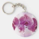Orquídeas roxas chaveiros