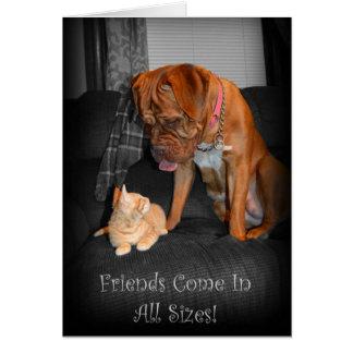 Os amigos vêm em todos os tamanhos! Cartão