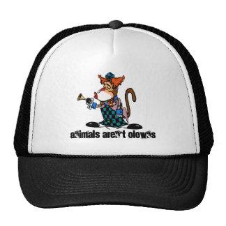 Os animais não são chapéu dos palhaços boné