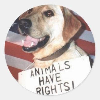 Os animais têm direitos adesivo