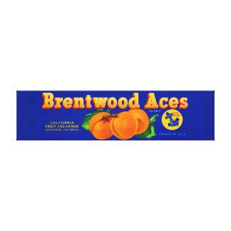 os anos 30 Brentwood Aces a etiqueta da caixa dos