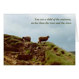 Os carneiros pastam em um cartão dos Desiderata