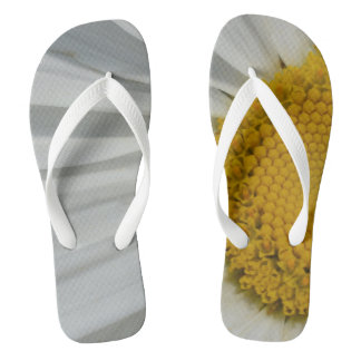 Os chinelos das mulheres