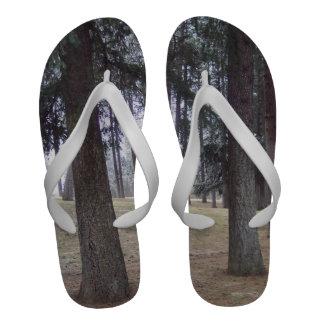 Os chinelos dos homens que caracterizam a floresta