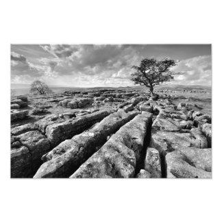 Os Dales de Yorkshire - país da pedra calcária Impressão De Foto