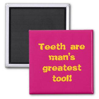 Os dentes são a grande ferramenta do homem! ímã quadrado