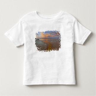 Os depósitos minerais coloridos emitem-se da tshirts