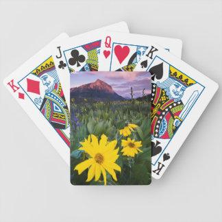 Os EUA, Colorado, Mt. Crested o montículo Jogos De Baralhos