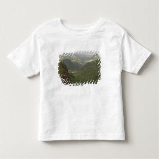 Os EUA, Havaí, Kauai, garganta negligenciam. (RF) Camiseta