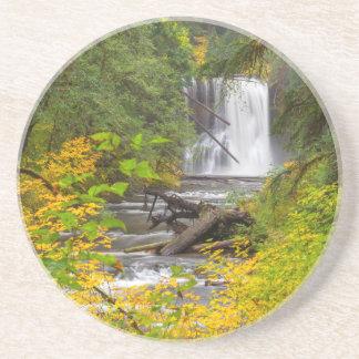 Os EUA, Oregon, prata caem o parque estadual 2 Porta Copos De Arenito
