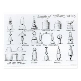 Os exemplos do Topiary trabalham, 1902 (gravura) Cartão Postal