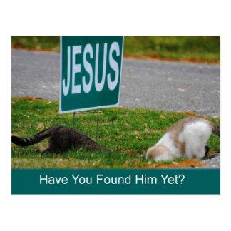 Os gatos encontraram o cartão engraçado de Jesus
