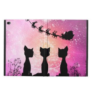 Os gatos olham ao céu a Papai Noel