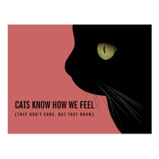 Os gatos sabem nós sentimos o cartão engraçado