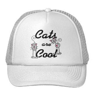 Os gatos são camiseta legal e presentes bonés