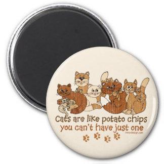 Os gatos são como microplaquetas de batata imas