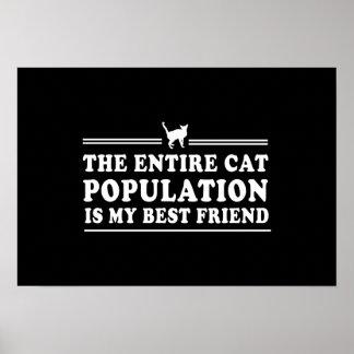 Os gatos são meu melhor amigo