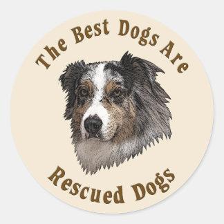 Os melhores cães são salvados (o pastor adesivo