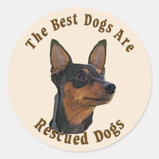 Os melhores cães são salvados - Pinscher diminuto Adesivo Em Formato Redondo