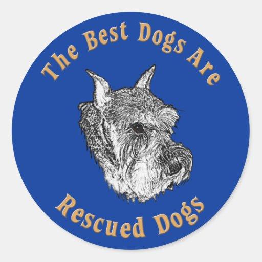 Os melhores cães são Schnauzer padrão salvado) Adesivos Em Formato Redondos