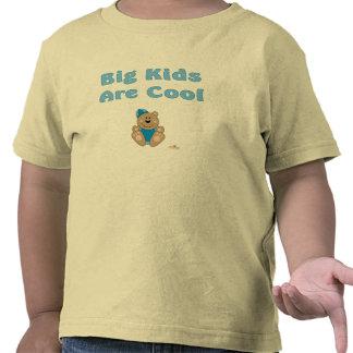 Os miúdos grandes do chapéu azul bonito da neve do camisetas