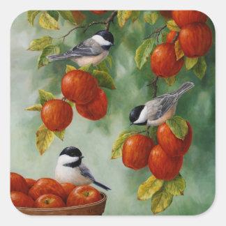 Os pássaros Apple do Chickadee colhem Adesivo Quadrado