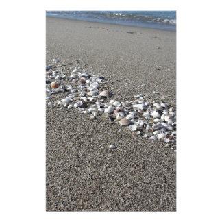 Os Seashells no verão da areia encalham a opinião Papelaria