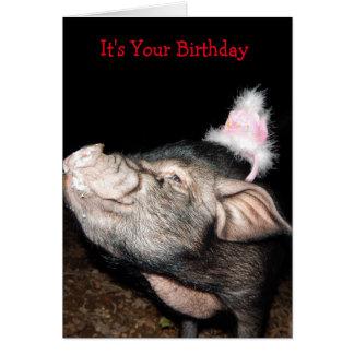 Os suínos cronometram, cartão de aniversário do