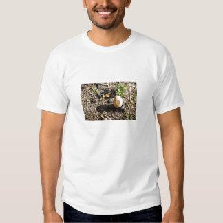 os suportes de ovo apenas t-shirt