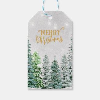 Os Tag do presente do Feliz Natal adicionam sua