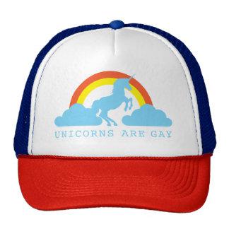 Os unicórnios são alegres com o arco-íris no boné