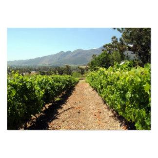 Os vinhedos em Franschhoek África do Sul Cartoes De Visita