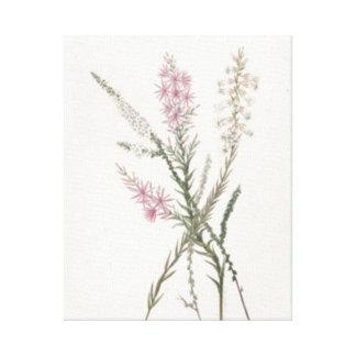 Os Wildflowers do vintage esticaram o impressão da Impressão Em Canvas