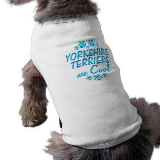 Os yorkshires terrier são legal camisa sem mangas para cachorro