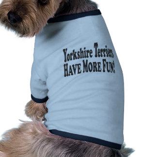 Os yorkshires terrier têm mais divertimento! roupas pet
