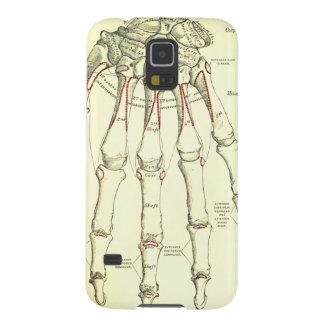 Ossos da anatomia | do vintage da mão capas par galaxy s5