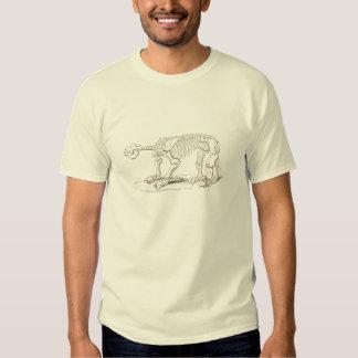 Ossos de dinossauro ilustrados vintage camiseta