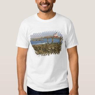 OU, costa de Oregon, Bandon, rio de Coquille Tshirt