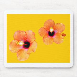 Ouro alaranjado BG do hibiscus os presentes de Zaz Mousepads