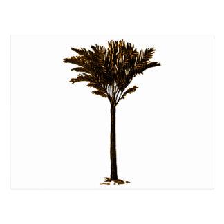 Ouro da palmeira 2 os presentes de Zazzle do MUSEU Cartao Postal